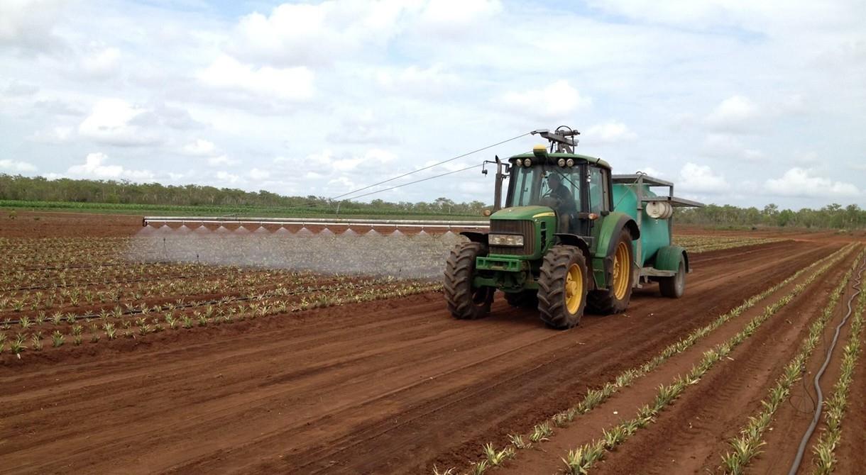 Preparing the soil for planting pineapples at Humpty Doo, near Darwin
