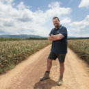 South Queensland production manager Tony French in a field of pineapples at Wamuran, south-east Queensland