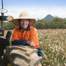 South Queensland pineapple farm manager Adrian Dipple in the pineapple field, Wamuran