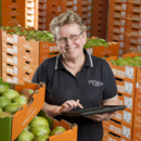 uality Assurance manager Jenny Jewell assess mangoes at the packing shed, Wamuran
