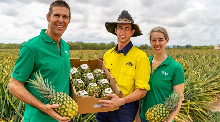 Stephen Scurr with Ben Scurr and Courtney Thies in the pineapple field at Mareeba