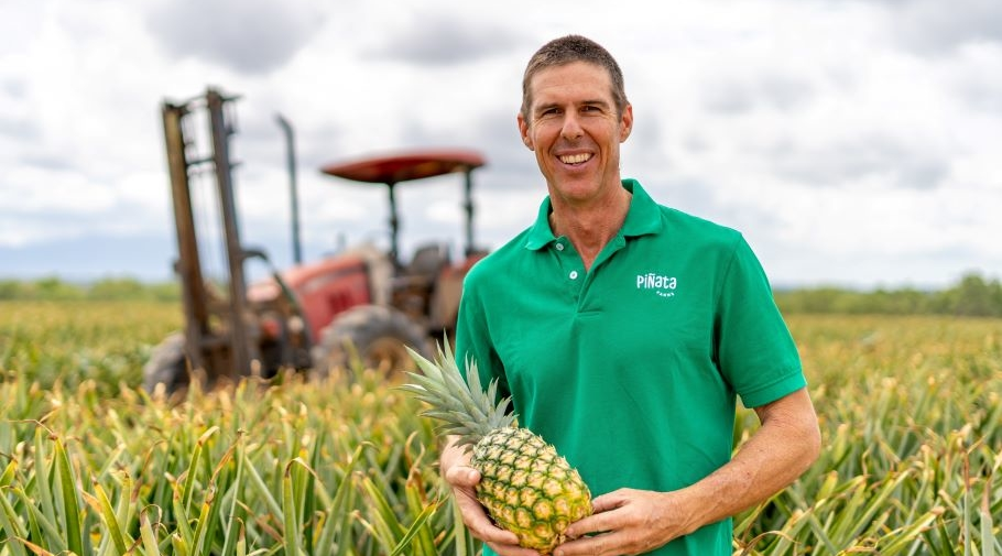 General manager Stephen Scurr with pineapples at Mareeba, Far North Queensland