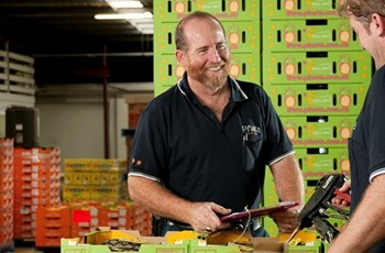 Pinata Farms' South Queensland operations manager Joe Schwarer
